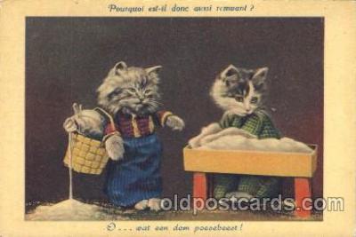 cat001304 - Cat, Cats, Postcard Post Card
