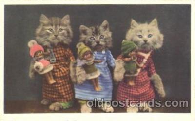 cat001305 - Cat, Cats, Postcard Post Card