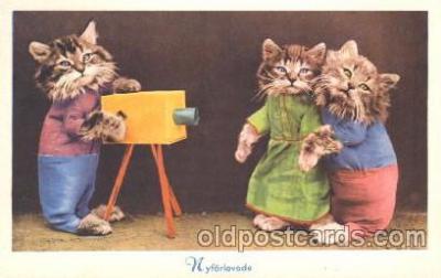cat001310 - Cat, Cats, Postcard Post Card