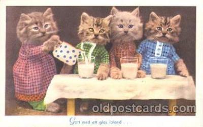 cat001311 - Cat, Cats, Postcard Post Card