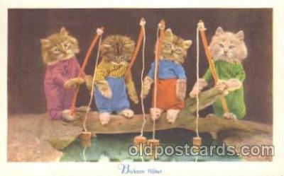 cat001315 - Cat, Cats, Postcard Post Card