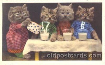cat001316 - Cat, Cats, Postcard Post Card