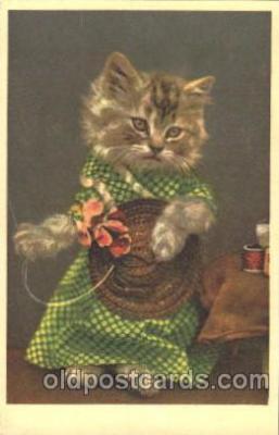 cat001333 - Cat, Cats, Postcard Post Card