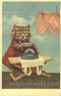 cat001334 - Cat, Cats, Postcard Post Card
