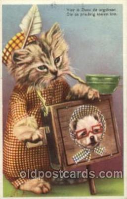 cat001367 - Cat Cats, Post Card, Post Card