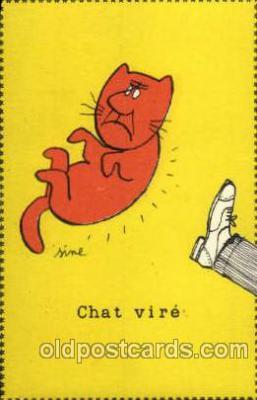 cat001382 - Cat Cats, Post Card, Post Card