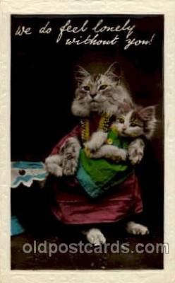 cat001384 - Cat Cats, Post Card, Post Card