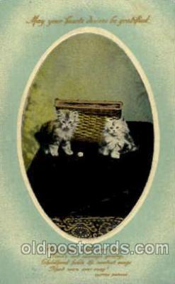 cat001388 - Cat Cats, Post Card, Post Card