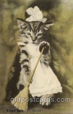 cat001409 - Cat Cats, Post Card, Post Card