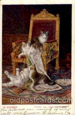 cat001440 - Cat Cats, Post Card, Post Card
