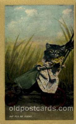 cat001468 - Cat Cats, Post Card, Post Card