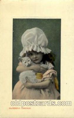 cat001484 - Cat Cats, Post Card, Post Card