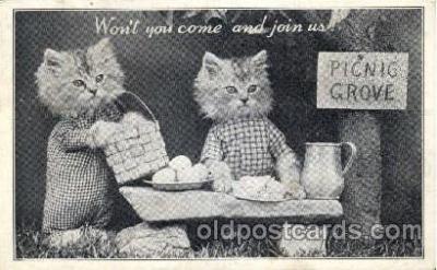 cat001526 - Cat Cats, Post Card, Post Card