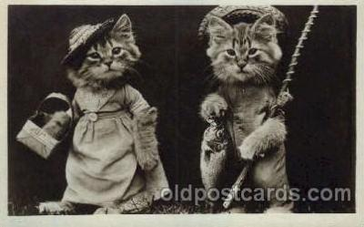 cat001530 - Cat Cats, Post Card, Post Card