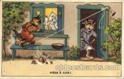 cat001601 - Cat Cats, Post Card, Post Card