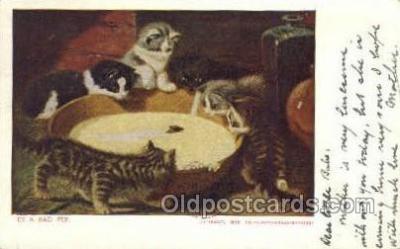 cat001644 - Cat Cats, Old Vintage Antique Postcard Post Card
