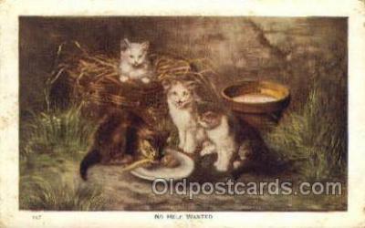 cat001650 - Cat Cats, Old Vintage Antique Postcard Post Card