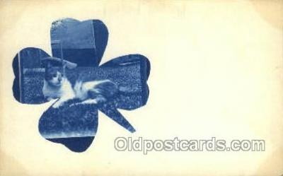 cat001653 - Cat Cats, Old Vintage Antique Postcard Post Card