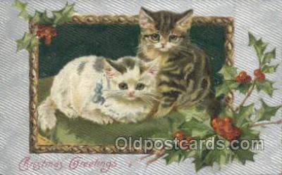 cat001661 - Cat Cats, Old Vintage Antique Postcard Post Card