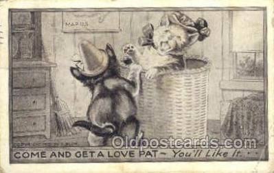 cat001677 - Cat Cats, Old Vintage Antique Postcard Post Card