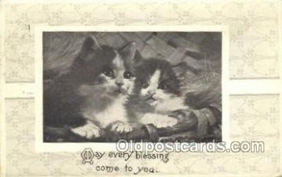 cat001681 - Cat Cats, Old Vintage Antique Postcard Post Card
