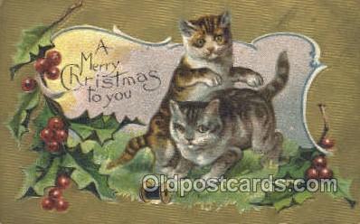 cat001688 - Cat Cats, Old Vintage Antique Postcard Post Card