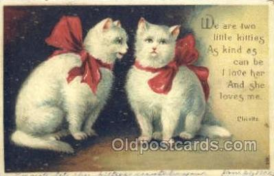 cat001699 - Cat Cats, Old Vintage Antique Postcard Post Card