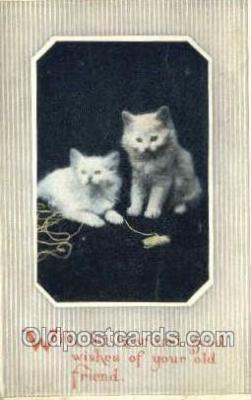 cat001730 - Cat Cats, Old Vintage Antique Postcard Post Card