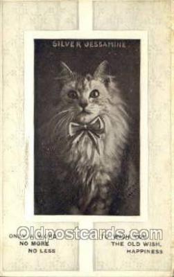 cat001732 - Cat Cats, Old Vintage Antique Postcard Post Card