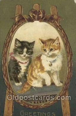 cat001742 - Cat Cats, Old Vintage Antique Postcard Post Card