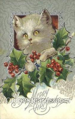 cat001746 - Cat Cats, Old Vintage Antique Postcard Post Card