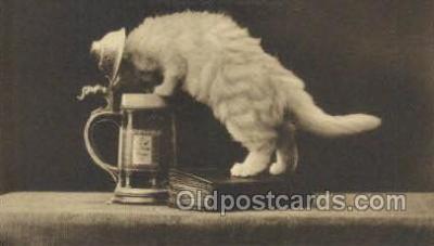 cat001779 - Cat Cats, Old Vintage Antique Postcard Post Card