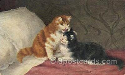 cat001794 - Artist Sperlich, Cat Cats, Old Vintage Antique Postcard Post Card