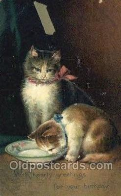 cat001808 - Cat Cats, Old Vintage Antique Postcard Post Card