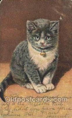 cat001810 - Cat Cats, Old Vintage Antique Postcard Post Card
