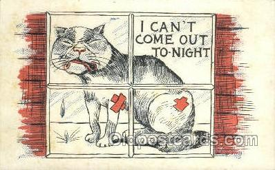 cat001820 - Cat Cats, Old Vintage Antique Postcard Post Card