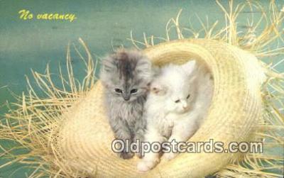 cat001863 - Chrome Cat Postcard, Post Card, Postales, Postkaarten, Kartpostal, Cartes, Postale, Postkarte, Ansichtskarte