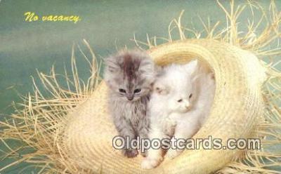 cat001877 - Chrome Cat Postcard, Post Card, Postales, Postkaarten, Kartpostal, Cartes, Postale, Postkarte, Ansichtskarte
