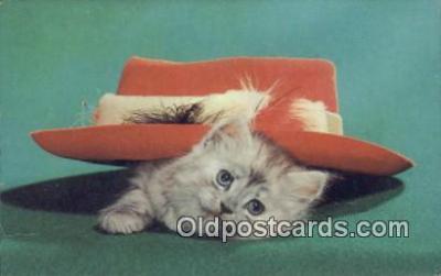 cat001884 - Chrome Cat Postcard, Post Card, Postales, Postkaarten, Kartpostal, Cartes, Postale, Postkarte, Ansichtskarte