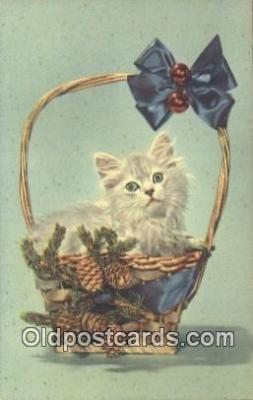cat001889 - Chrome Cat Postcard, Post Card, Postales, Postkaarten, Kartpostal, Cartes, Postale, Postkarte, Ansichtskarte