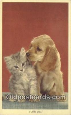 cat001891 - Chrome Cat Postcard, Post Card, Postales, Postkaarten, Kartpostal, Cartes, Postale, Postkarte, Ansichtskarte