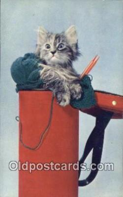 cat001909 - Chrome Cat Postcard, Post Card, Postales, Postkaarten, Kartpostal, Cartes, Postale, Postkarte, Ansichtskarte