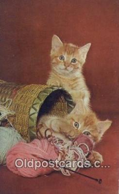 cat001946 - Chrome Cat Postcard, Post Card, Postales, Postkaarten, Kartpostal, Cartes, Postale, Postkarte, Ansichtskarte