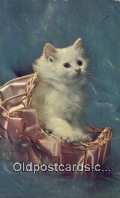 cat001952 - Chrome Cat Postcard, Post Card, Postales, Postkaarten, Kartpostal, Cartes, Postale, Postkarte, Ansichtskarte