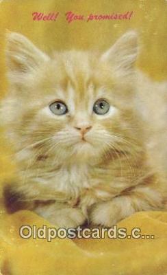 cat001962 - Chrome Cat Postcard, Post Card, Postales, Postkaarten, Kartpostal, Cartes, Postale, Postkarte, Ansichtskarte