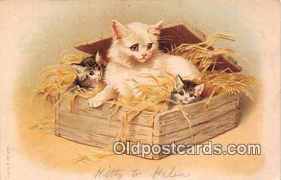 cat002037 - Postcard Post Card