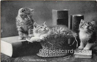 cat002038 - Book Worms CE Bullard Postcard Post Card