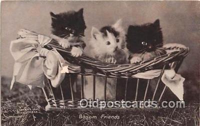 cat002049 - Bosom Friends CE Bullard Postcard Post Card