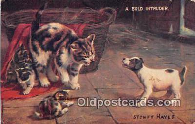 cat002053 - Bold Intruder Sydney Hayes Postcard Post Card