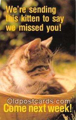 cat002073 - Lord is My Helper Hebrews 13:6 Postcard Post Card